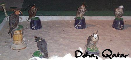 Eagle Doha